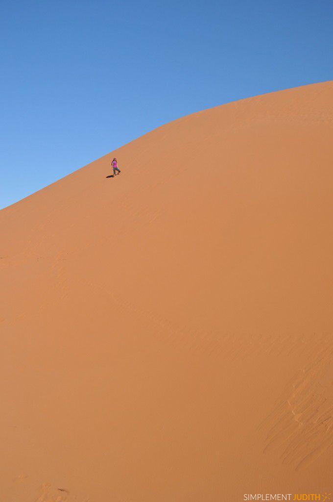 desert Erg Chebbi Ju monte